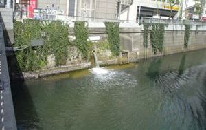 20080405-03(水web).JPG