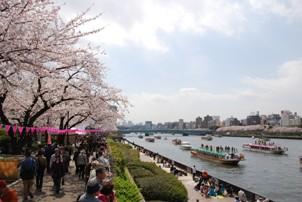20100403sumida.JPG