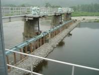 20060622-2(水web).JPG