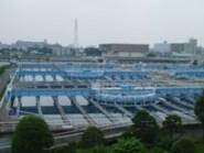 20060711-5(水web).JPG