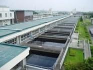 20060711-7(水web).JPG