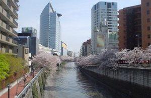20080405-05(水web).JPG