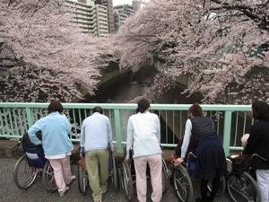 20110407kanda.JPG